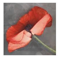 Erin Clark's Rouge Canvas