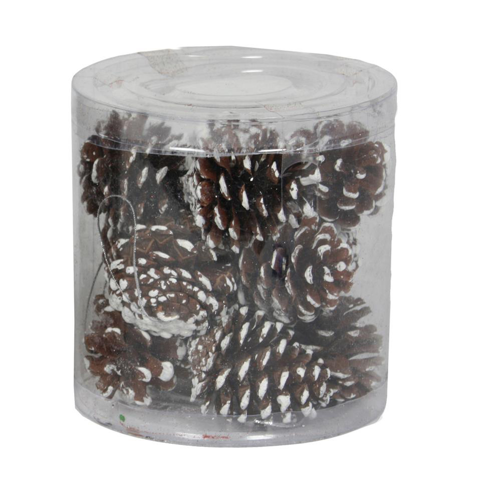 White Dusted Pinecones - Pack of 12